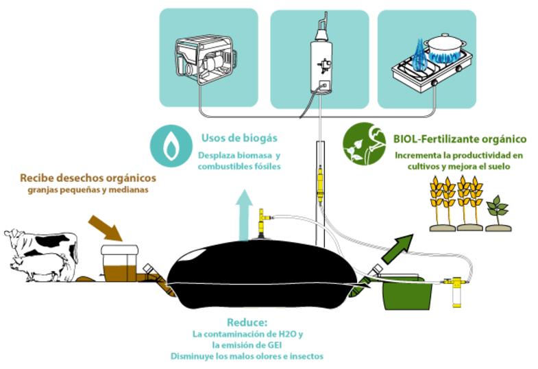 Sistema Biodigestor